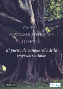 Informe Chief Customer Experience Officer